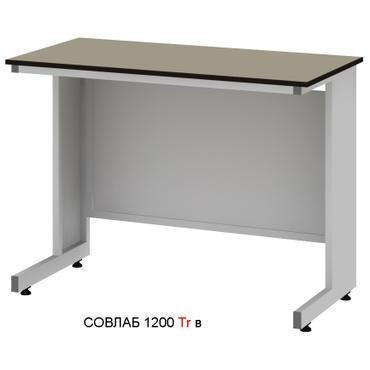 Стол лабораторный высокий Mod. -1200 СЛLg в